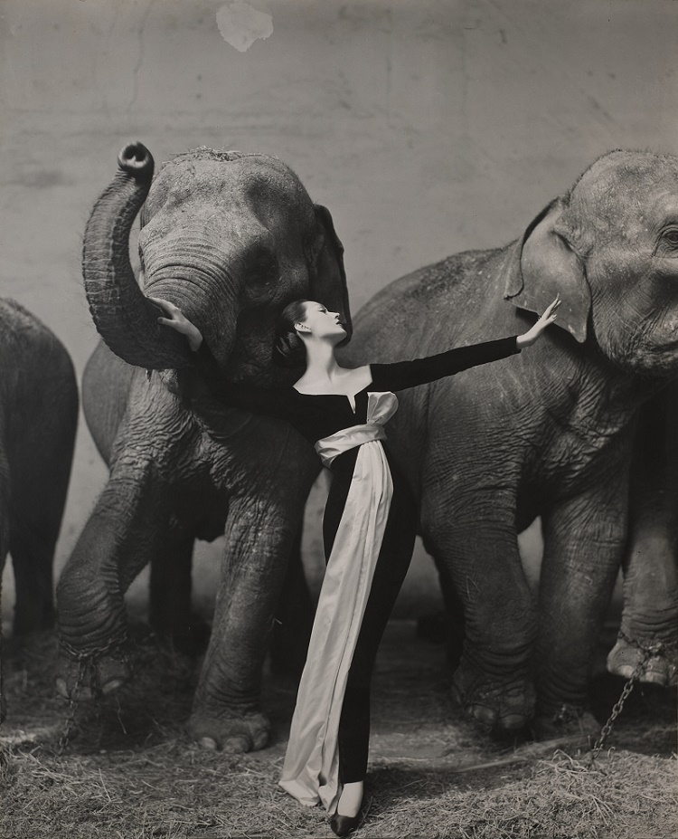 Avedon's photograph is one of only two monumental prints made from his original negative